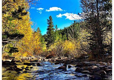 Ali's Creek picture